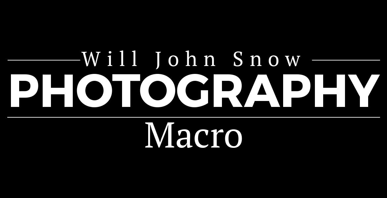 Photo-Macro Page Header